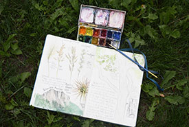 My trusty watercolour set and notebook (Photo by Emma Dunlop/NCC)