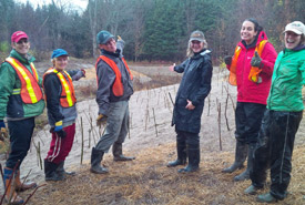 """Proud volunteers show off their dogwood, alder and willow live stakes along the new channel. """"Planted"""" in the fall with a dead-blow mallet, these will sprout and grow in the spring. (Photo by Nottawasaga Valley Conservation Authority)"""