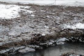 Frozen riverbank (Photo by NCC)
