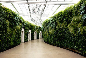 Vertical gardens add life and colour to any room. (Photo by Wikimedia Commons)