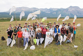 Waterton butterfly count in July 2014. I am in the middle at the back as a Conservation Volunteer (Photo by NCC)