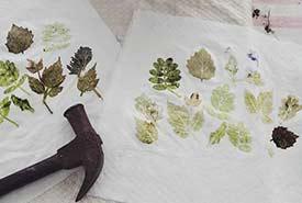 Leaf printing. (Photo by Sage Yathon)