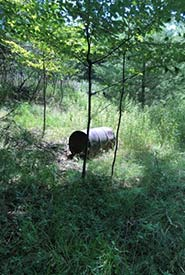 Historical dump sites, like this metal barrel, are common in eastern Ontario. (Photo by NCC)