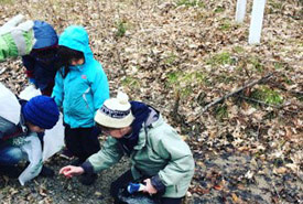 Junior naturalists get right to work to search for signs of wildlife (Photo by Dispatches from the Field)