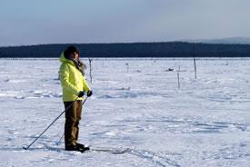 Lindsay Notzl cross-country skiing in Labrador (Photo by Jon Feldgajer)