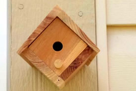 Bee homes come in all shapes and sizes. (Photo by NCC)