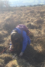 Poking the peatland with a stick (Photo courtesy of Megan Quinn/NCC staff)