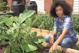 Volunteering at a local community garden (Photo by Micheline Khan)