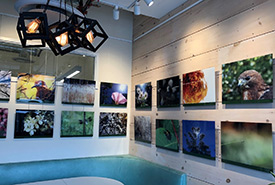 Fresh Perspectives photo exhibit at 10C in Guelph, ON (Photo by NCC)