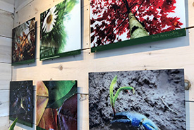 The students' photos are professionally mounted and put on display at public photo exhibits. (Photo by NCC)