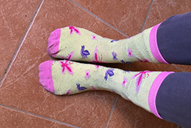 Nature-themed socks definitely help me track butterflies and flowers in the field (Photo by Megan Quinn/NCC staff)