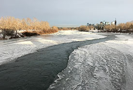 Nearly frozen over Bow River with downtown Calgary in background. (Photo by Gayle Roodman/NCC staff)