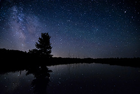 The night sky over Rankin River in Saugeen Bruce Peninsula. (Photo by Esme Batten/NCC staff)