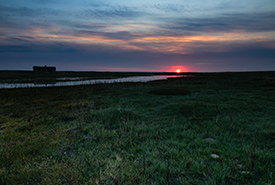 Sunrise at Old Man on His Back Prairie and Heritage Conservation Area (OMB), SK (Photo by Cameron Wood/NCC staff)