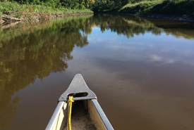 Lisa paddling along the Rat River (Photo by NCC)