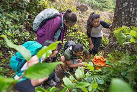Explorer la nature (Photo de Getty Images)