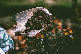 Person digging (Photo by Lisa Fotios via Pexels)