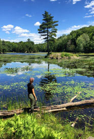 Exploring a wetland in the Frontenac Arch, ON (Photo by NCC)