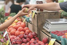 Farmers' market (Photo by Erik Scheel, Pexels)