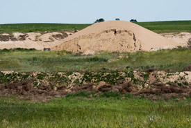 Sand dunes in Saskatchwan (Photo by Gail F. Chin)