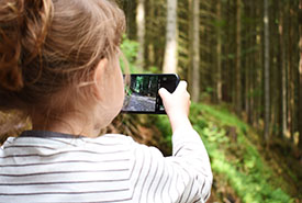 Using a smartphone to identify nature (Photo by Pixabay)