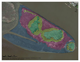 Polygons used to divide Swishwash Island into habitat types (Photo by BCIT)