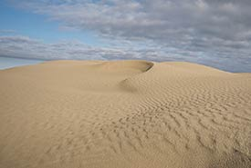 Windswept pattern on the sand, Great Sand Hills, SK (Photo by Bill Armstrong)