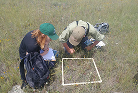 Interns doing property monitoring (Photo by NCC)