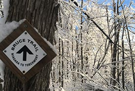 Snow-covered trail sign at Hockley Valley, ON (Photo by Dan Kraus/NCC staff)