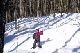 Snowshoeing in Gatineau Park, QC (Photo by D Johnson)
