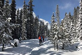 Snowshoeing in Chickadee Valley, AB (Photo by Gayle Roodman/NCC staff)