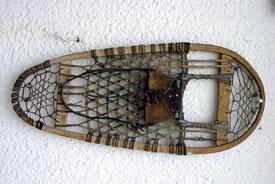 Snowshoe (Photo by katpatuka, Wikimedia Commons)