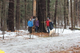 Standing with Ontario's tallest pine (Photo by NCC)