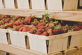 Fresh strawberries at a farmers' market (Photo by Alexandria Baldridge, Pexels)