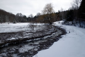 Stream on property, ON (Photo by NCC)