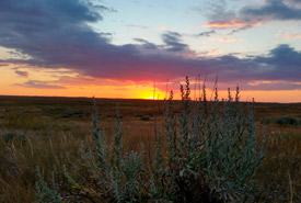 The sun setting over a great weekend at OMB, SK. (Photo by NCC)