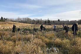 Volunteers plant trees at Bunchberry Meadows, AB (Photo by NCC)