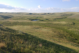 Wideview, SK (Photo by NCC)