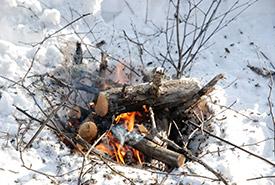 Practice campfire etiquette. (Photo by Pixabay)
