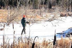 Winter field trip, Elk Glen, MB (Photo by NCC)