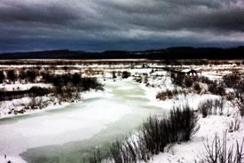 Wye Marsh, ON (Photo by Stephanie Mayo)