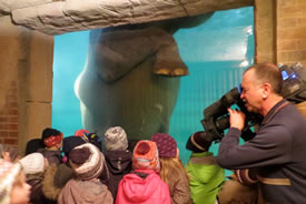 Cameraman Wade Cornell at the elephant exhibit, Leipzig Zoo, Germany (Photo by Geoff D'Eon)
