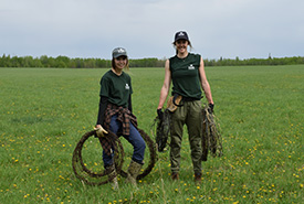 Interns at Golden Ranch helping with a wire pull (Photo by NCC)