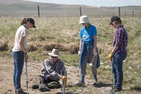 NCC conservation staff and volunteers assess the planting work at Waldron Ranch. (Photo by Kyle Meller)