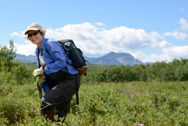 A volunteer removing an invasive weed at Waterton Park, AB. (Photo by NCC)