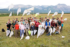 CV event, Waterton butterfly survey (Photo by NCC)