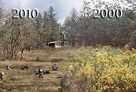 Timelapse of scotch broom removal at NCC's Cowichan Garry Oak Preserve (Graphic by NCC/Janel Saydam)
