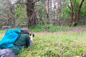 Photographing the meadows at Lohbrunner Woods, BC (Photo by NCC)