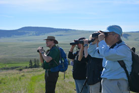 Tour attendees join NCC staff for a morning of bird watching (Photo by NCC)