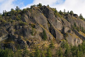 The cliffs of Chase Woods Nature Preserve, BC (Photo by Tim Ennis)